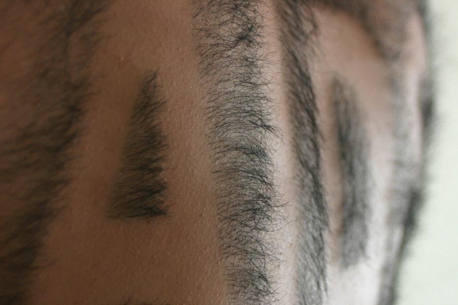 背毛のメッセージを表現した特殊造形作品